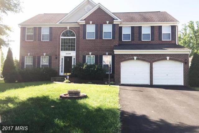 16399 Kramer Estate Drive, Woodbridge, VA 22191 (#PW9974231) :: LoCoMusings