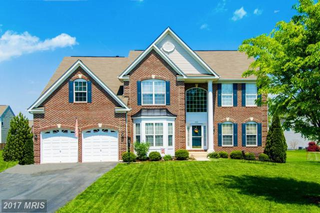 8451 Hessian Hill Court, Bristow, VA 20136 (#PW9976169) :: LoCoMusings