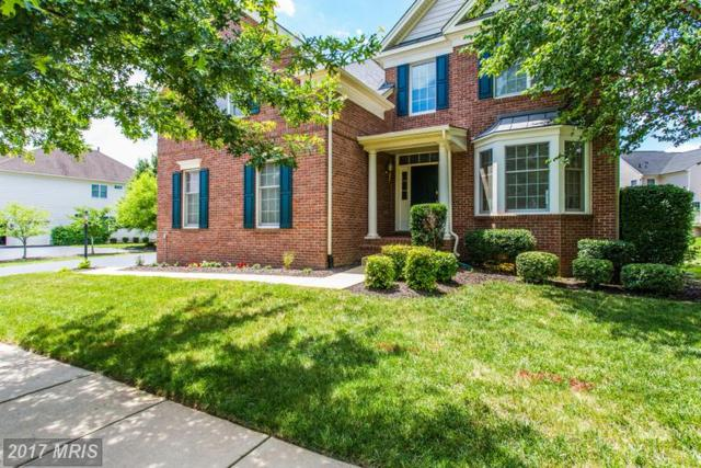 5536 Hillsman Farm Lane, Haymarket, VA 20169 (#PW9978108) :: Colgan Real Estate