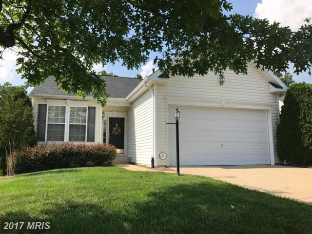 3704 Grey Ghost Court, Dumfries, VA 22025 (#PW9979475) :: Pearson Smith Realty