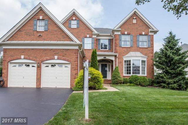 5672 Shoal Creek Drive, Haymarket, VA 20169 (#PW9980339) :: Colgan Real Estate