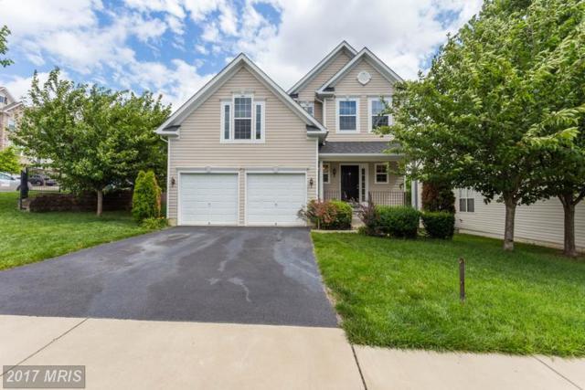 16514 Kramer Estate Drive, Woodbridge, VA 22191 (#PW9982307) :: AJ Team Realty
