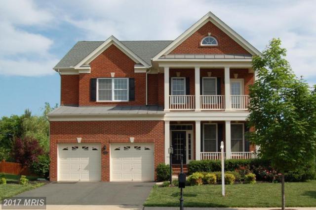 15212 Grigsby Place, Haymarket, VA 20169 (#PW9983111) :: Colgan Real Estate