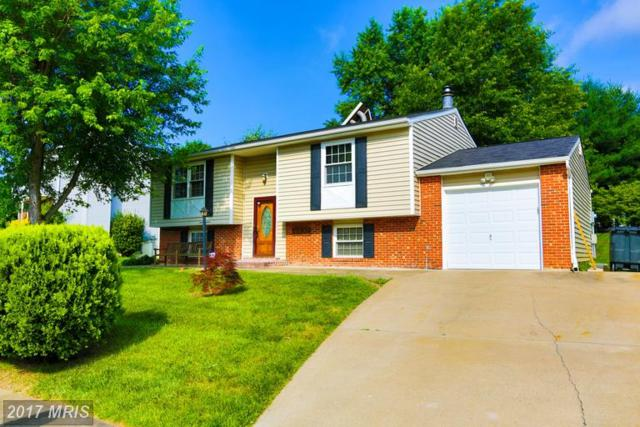 13304 Nottingdale Drive, Woodbridge, VA 22193 (#PW9987002) :: RE/MAX Gateway