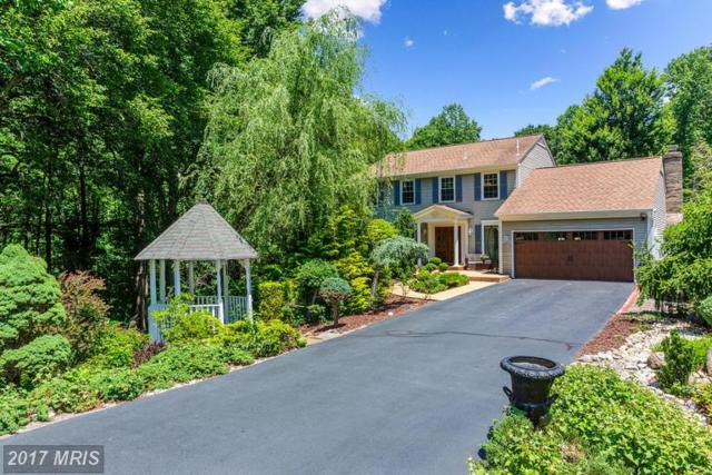 15070 Eclipse Drive, Manassas, VA 20112 (#PW9987196) :: Network Realty Group