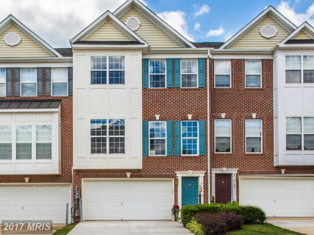 6142 Popes Creek Place, Haymarket, VA 20169 (#PW9990227) :: Coldwell Banker Elite