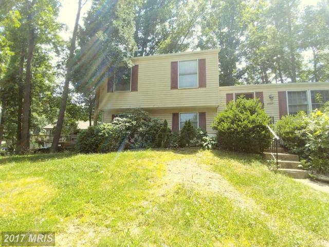 4307 Candlestick Court, Dumfries, VA 22025 (#PW9998264) :: Pearson Smith Realty