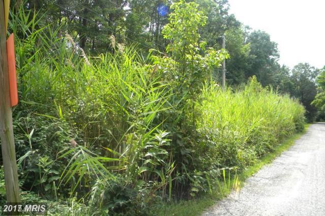 Virginia Road, Stevensville, MD 21666 (#QA10007554) :: Pearson Smith Realty