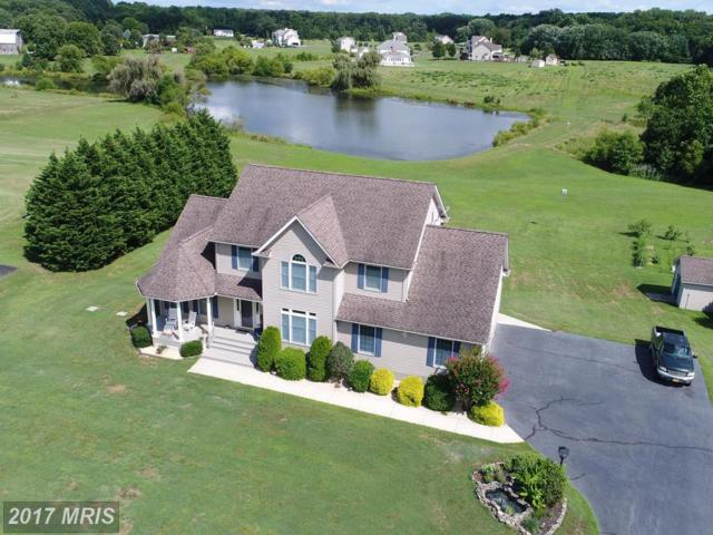 225 Winchester Drive, Centreville, MD 21617 (#QA10016755) :: Pearson Smith Realty