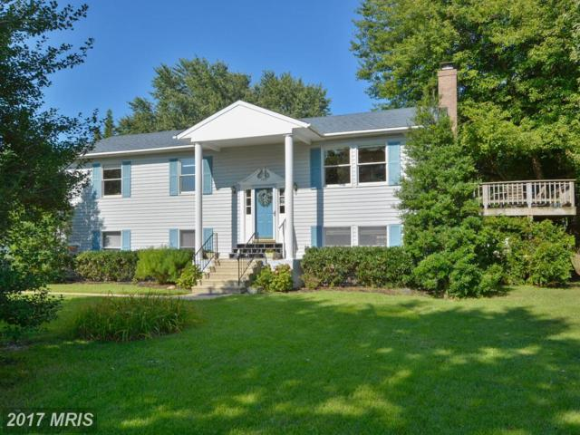 109 Queen Anne Road, Stevensville, MD 21666 (#QA10021954) :: Pearson Smith Realty