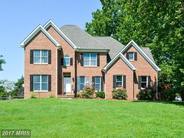 239 Matapex Plantation Lane, Stevensville, MD 21666 (#QA10041672) :: Pearson Smith Realty