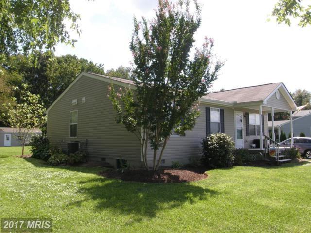 625 Carmichael Road, Queenstown, MD 21658 (#QA10051807) :: The Riffle Group of Keller Williams Select Realtors