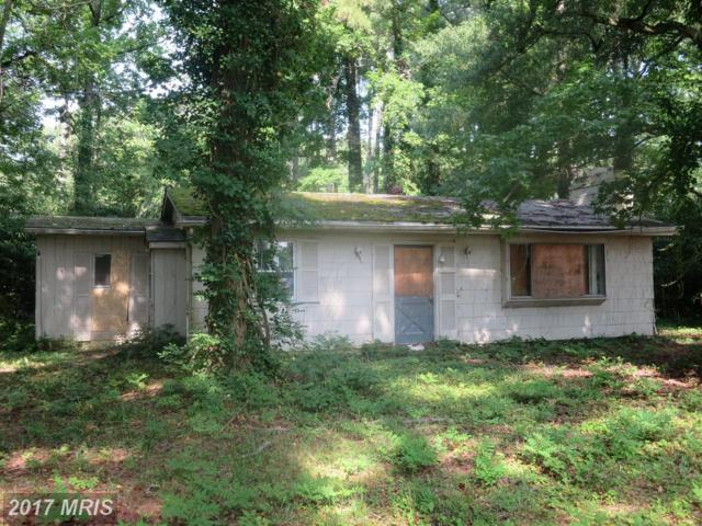 542 Talbot Road, Stevensville, MD 21666 (#QA10059516) :: Pearson Smith Realty