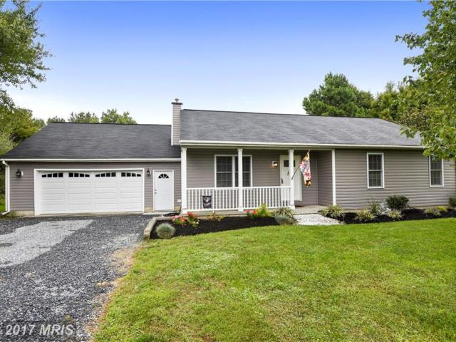 310 Tennessee Road, Stevensville, MD 21666 (#QA10061136) :: Pearson Smith Realty