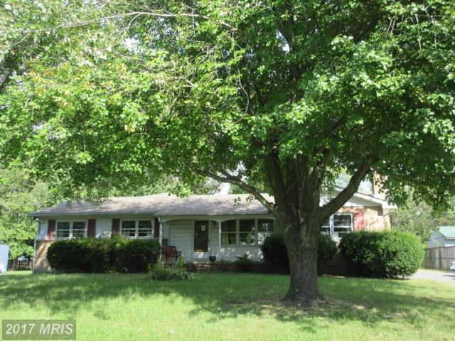 1820 Harbor Drive, Chester, MD 21619 (#QA10070463) :: Pearson Smith Realty