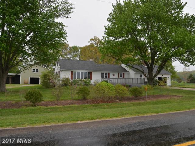 106 Carter Road, Church Hill, MD 21623 (#QA10078461) :: LoCoMusings