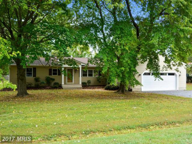 105 Canal Street, Grasonville, MD 21638 (#QA10080524) :: Pearson Smith Realty