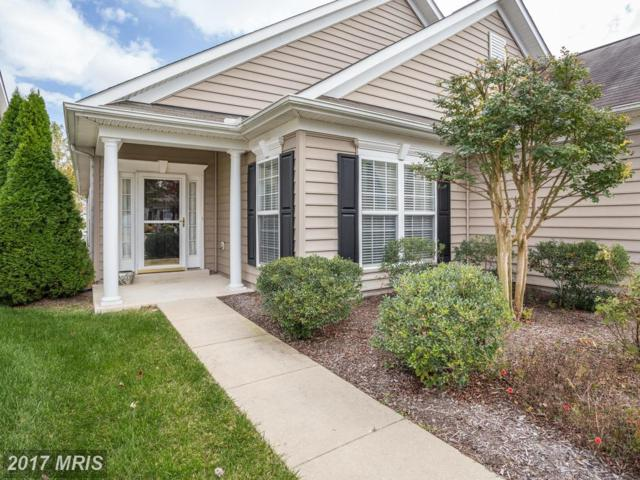 206 Orchestra Place, Centreville, MD 21617 (#QA10083422) :: Pearson Smith Realty