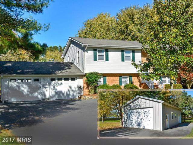 114 Cedar Road, Chester, MD 21619 (#QA10103101) :: The Riffle Group of Keller Williams Select Realtors