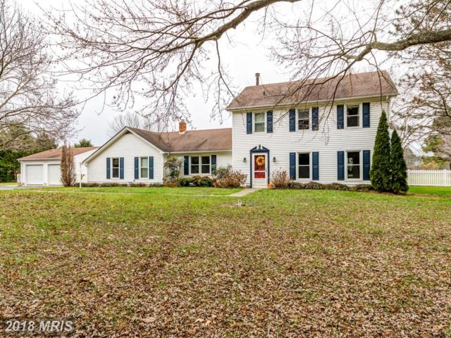 133 Mainbrace Drive, Queenstown, MD 21658 (#QA10128505) :: The Gus Anthony Team