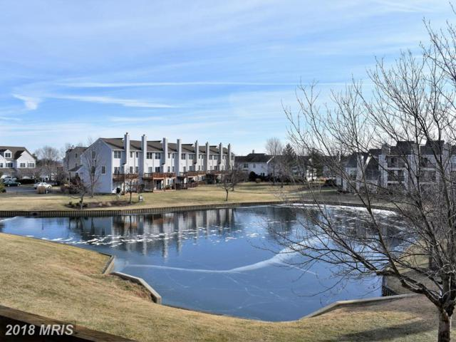 214 Teal Court G, Chester, MD 21619 (#QA10129575) :: Pearson Smith Realty