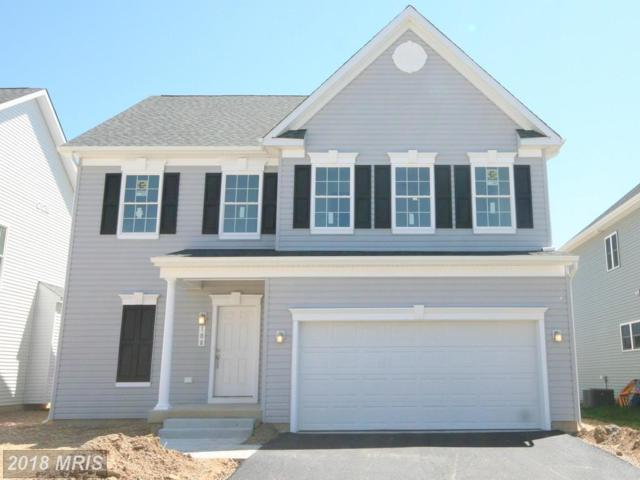 0 Anna Carol Drive, Stevensville, MD 21666 (#QA10132979) :: Blackwell Real Estate
