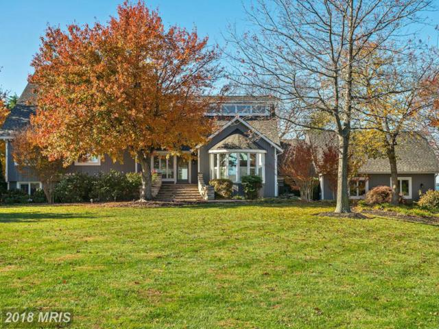 2872 Cox Neck Road, Chester, MD 21619 (#QA10136936) :: Maryland Residential Team