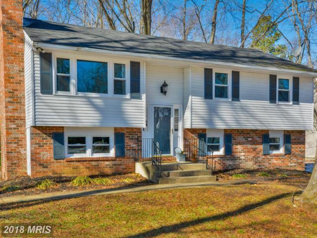 906 Buckingham Drive, Stevensville, MD 21666 (#QA10137595) :: Maryland Residential Team