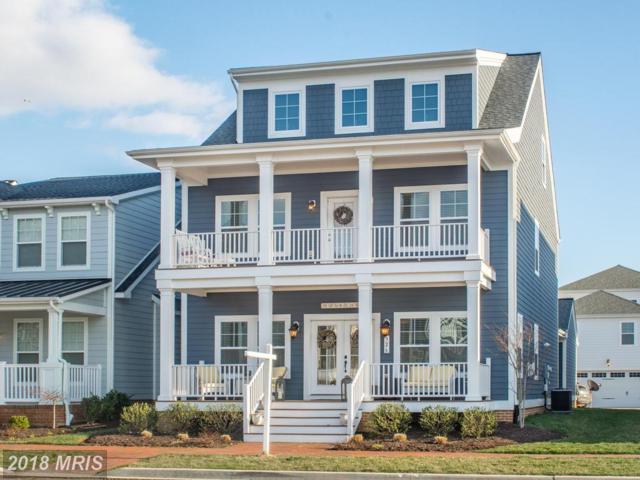 326 Thomas White Boulevard, Chester, MD 21619 (#QA10172758) :: Keller Williams Pat Hiban Real Estate Group