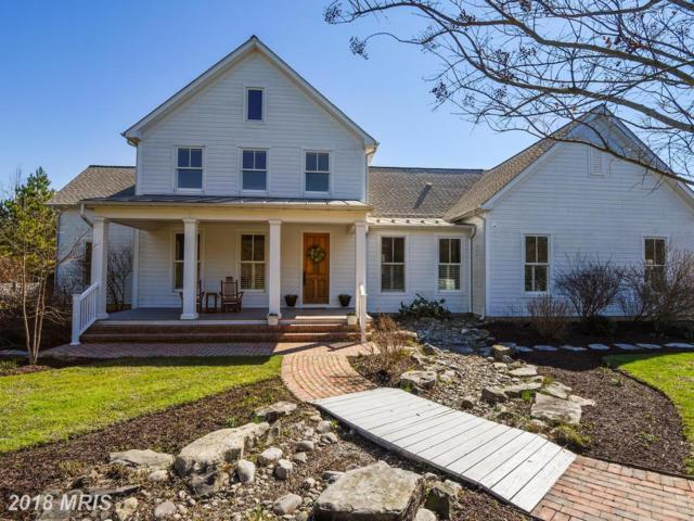 833 Stagwell Road, Queenstown, MD 21658 (#QA10177983) :: Maryland Residential Team