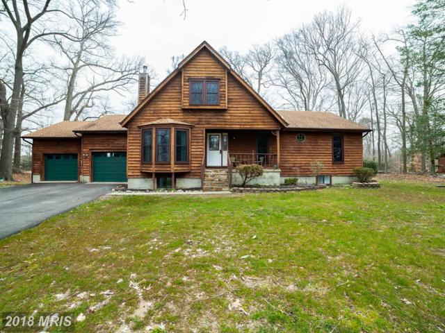 210 Mainbrace Drive, Queenstown, MD 21658 (#QA10193183) :: The Riffle Group of Keller Williams Select Realtors