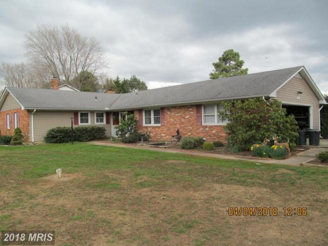 100 Rutledge Road, Queenstown, MD 21658 (#QA10202034) :: Maryland Residential Team