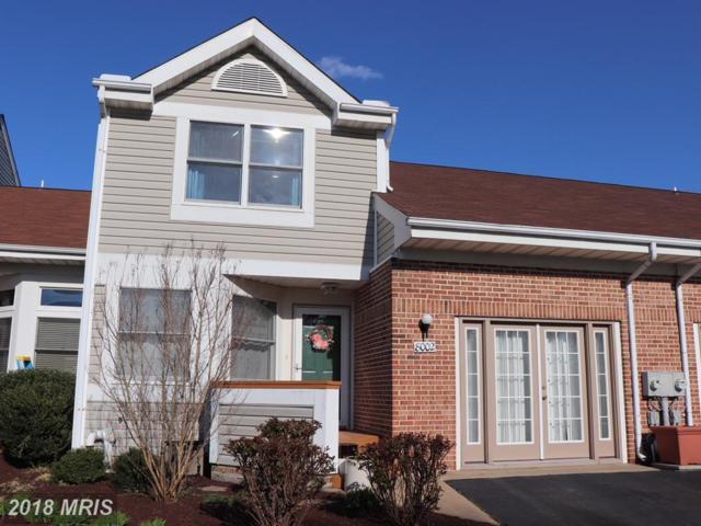 8002 Bridgepointe Drive, Chester, MD 21619 (#QA10204082) :: Dart Homes