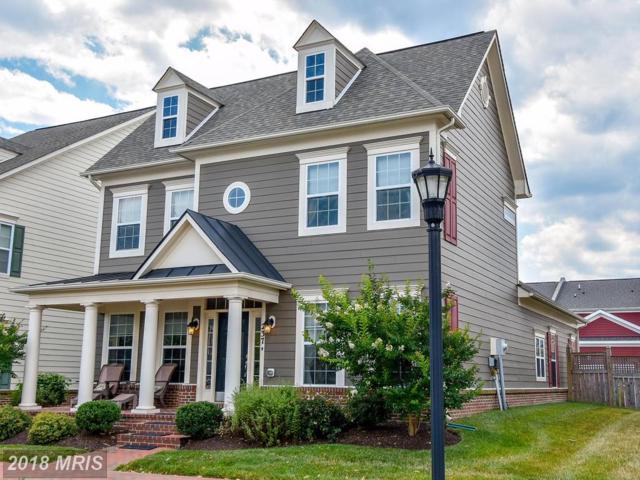 237 Evelyne Street, Chester, MD 21619 (#QA10208636) :: Keller Williams Pat Hiban Real Estate Group