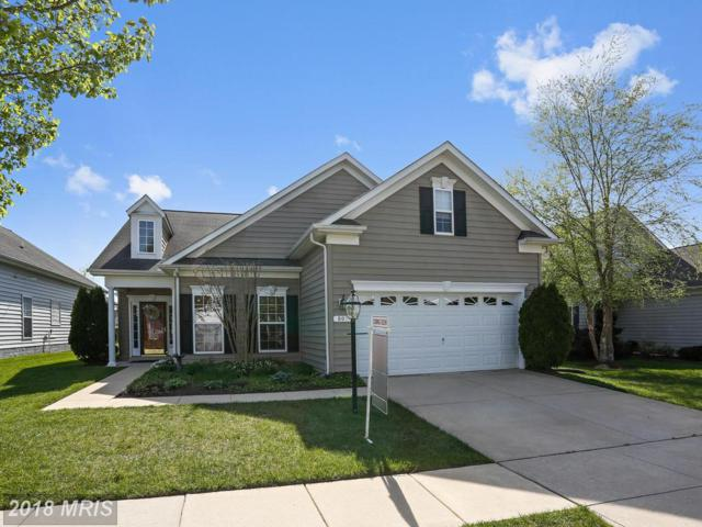 807 Harmony Way, Centreville, MD 21617 (#QA10213083) :: The Gus Anthony Team