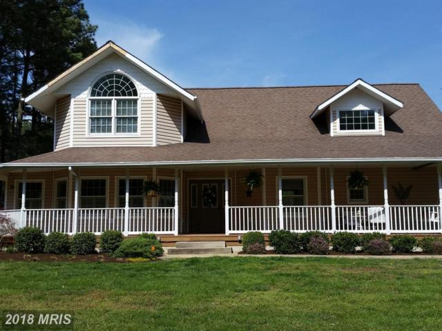 115 Mallard Drive, Stevensville, MD 21666 (#QA10214125) :: Maryland Residential Team