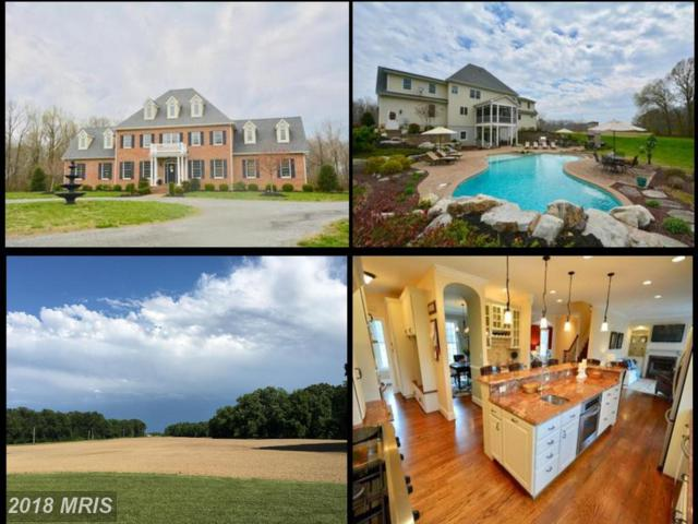 445 Spaniard Neck Road, Centreville, MD 21617 (#QA10214883) :: Maryland Residential Team