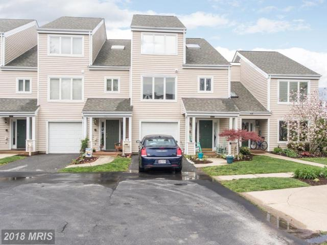 412 Drake Tail Place, Chester, MD 21619 (#QA10224129) :: Dart Homes