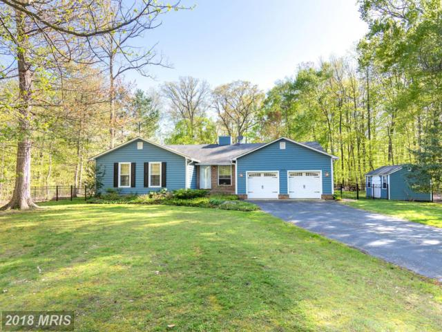 205 Somerset Court, Queenstown, MD 21658 (#QA10224294) :: The Riffle Group of Keller Williams Select Realtors