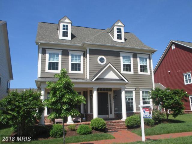 237 Evelyne Street, Chester, MD 21619 (#QA10245501) :: The Riffle Group of Keller Williams Select Realtors