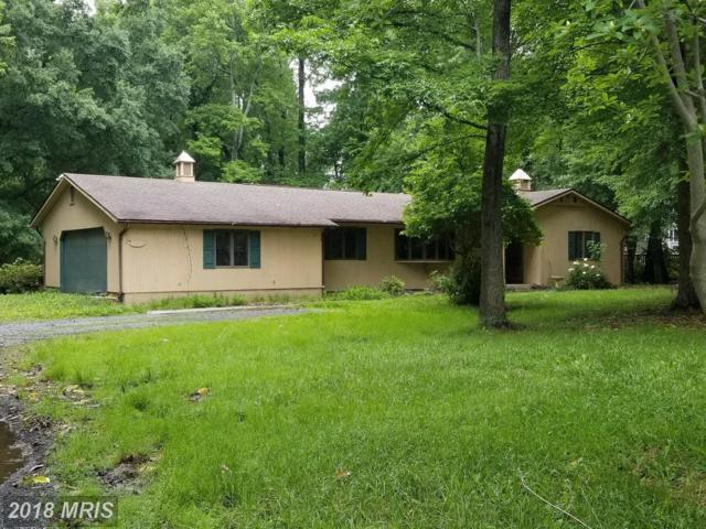3 Greenwood Shoals Shoals, Grasonville, MD 21638 (#QA10265536) :: The Gus Anthony Team