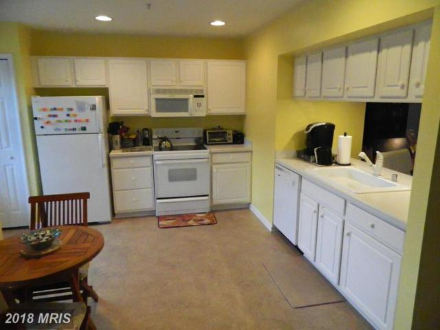 29-D Queen Mary Court, Chester, MD 21619 (#QA10275044) :: Keller Williams Pat Hiban Real Estate Group