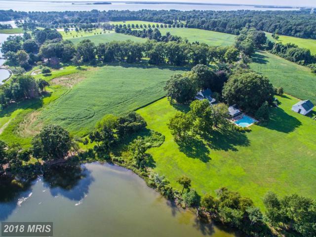 212 Greenwood Hall Farm Lane, Queenstown, MD 21658 (#QA10277200) :: Maryland Residential Team