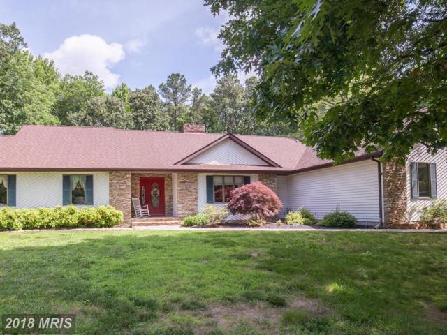 208 Grove Cove Road, Centreville, MD 21617 (#QA10295165) :: Maryland Residential Team