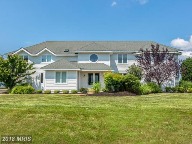 2838 Cox Neck Road, Chester, MD 21619 (#QA10300082) :: Maryland Residential Team
