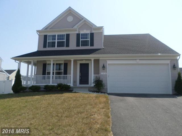 158 Long Creek Way, Centreville, MD 21617 (#QA10300236) :: Maryland Residential Team