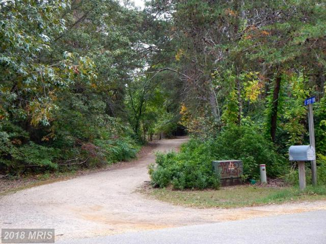 0 E Step Rd Boulevard, Chestertown, MD 21620 (#QA10300777) :: Gray Realty Group
