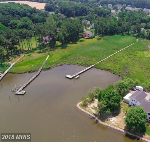 114 Parks Road, Chester, MD 21619 (#QA10302189) :: Maryland Residential Team