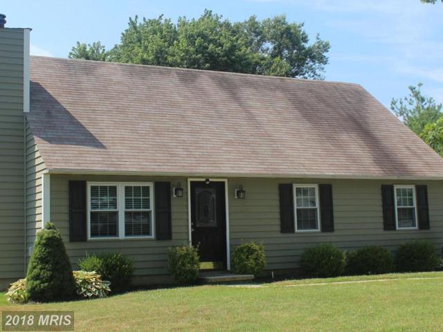 219 Ackerman Road, Stevensville, MD 21666 (#QA10302501) :: Maryland Residential Team