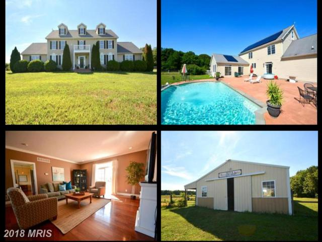 265 Pear Tree Point Road, Chestertown, MD 21620 (#QA10303238) :: Maryland Residential Team